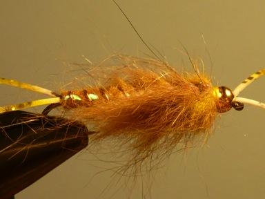 Golden Stonefly