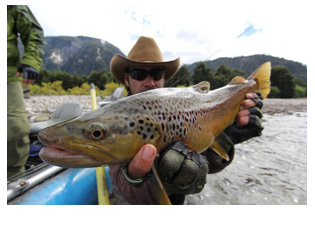 Patagonia Brown Trout