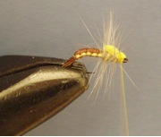 Sulphur Emerger