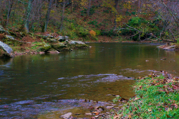 Muddy Creek November