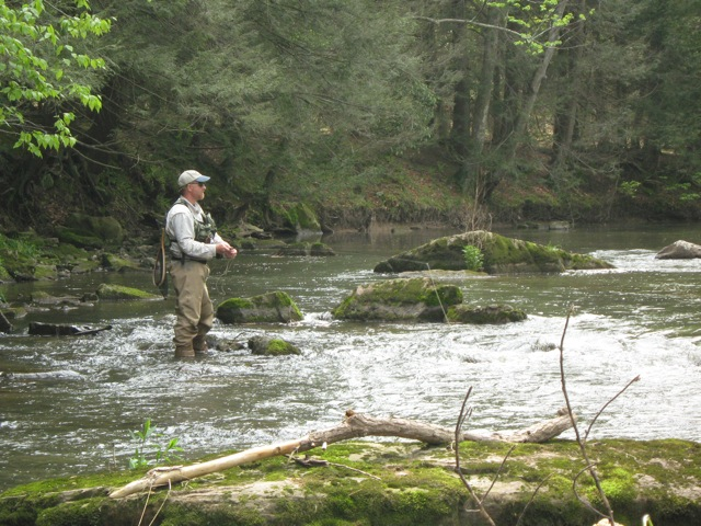 Maurice on Penns Creek