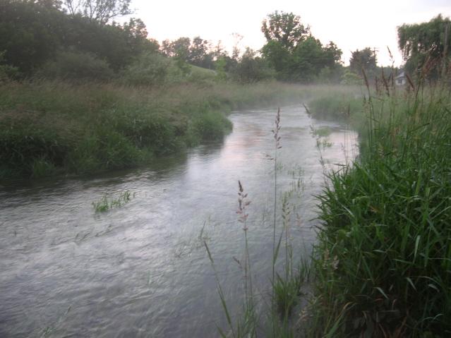 Falling Springs - Greenway Meadow
