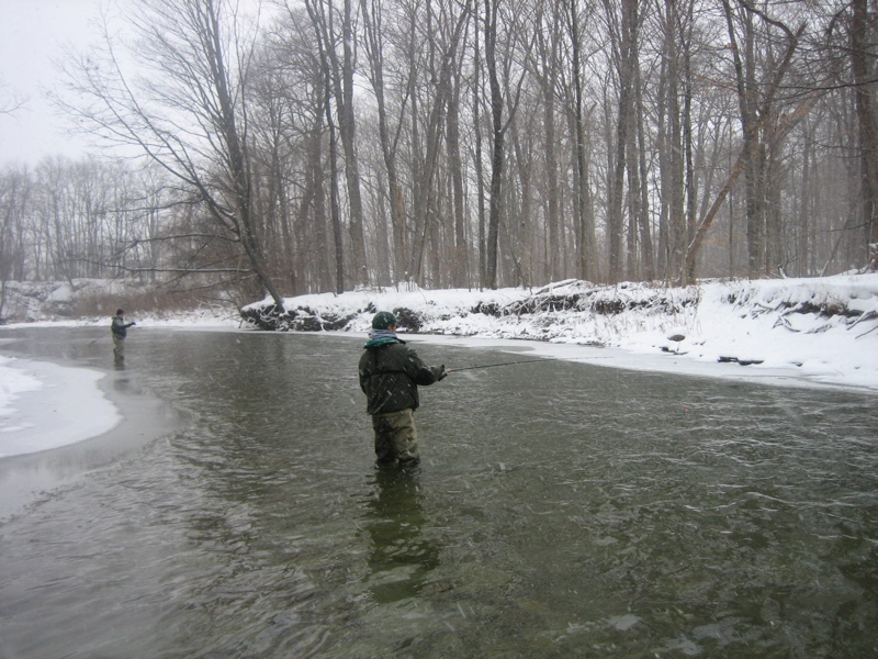 Steelhead Weather