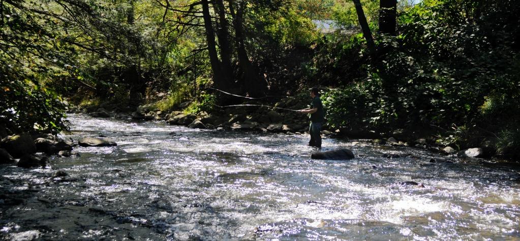FishingARiffle