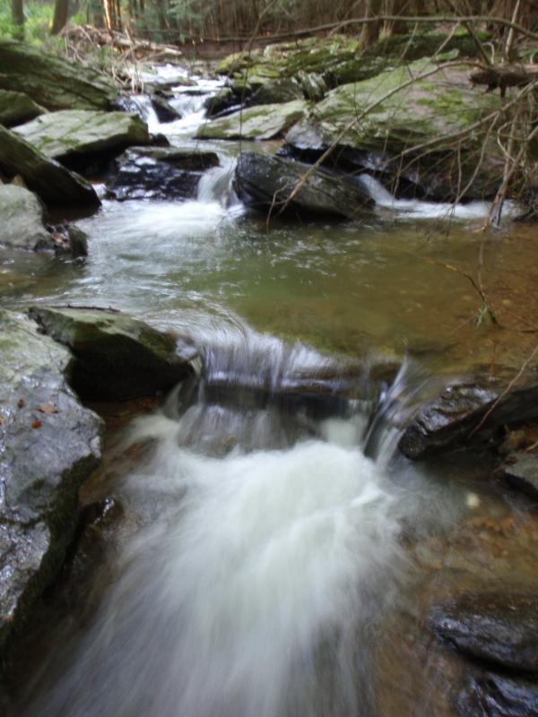 Muddy Creek cascading trib