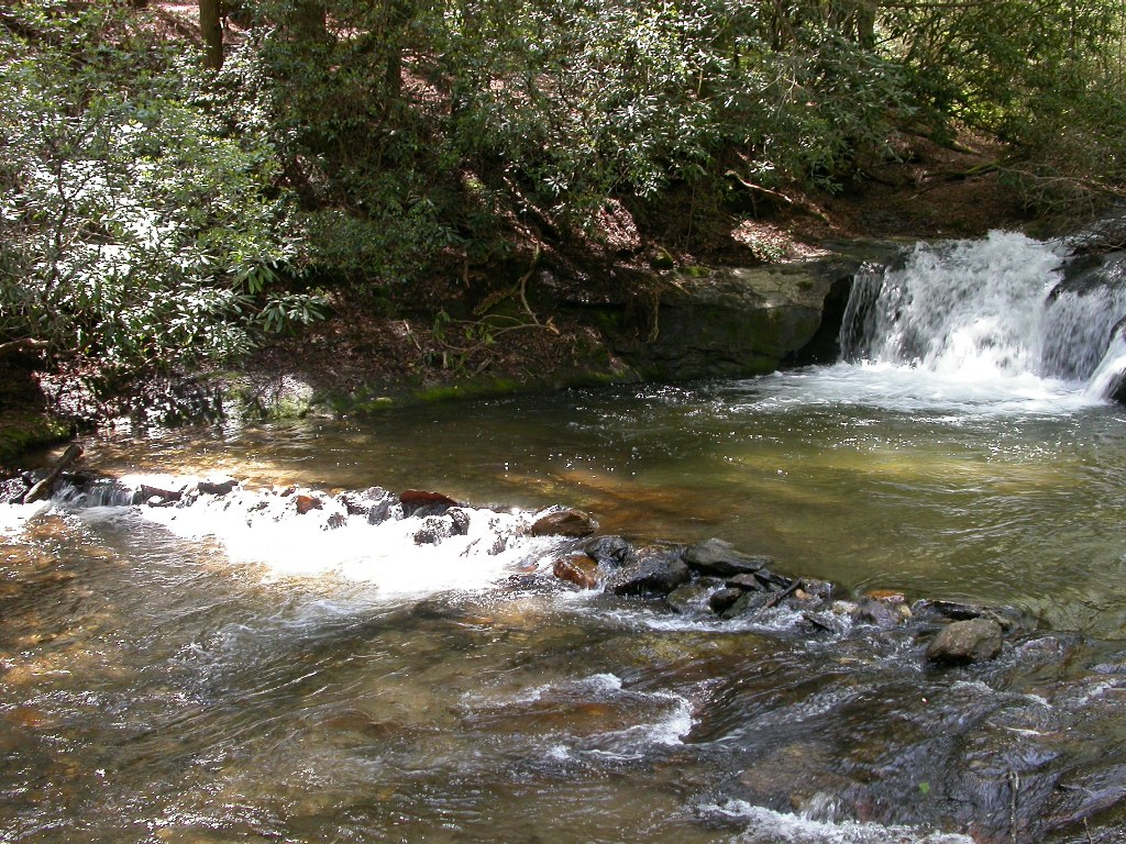Wildcat Creek North Georgia