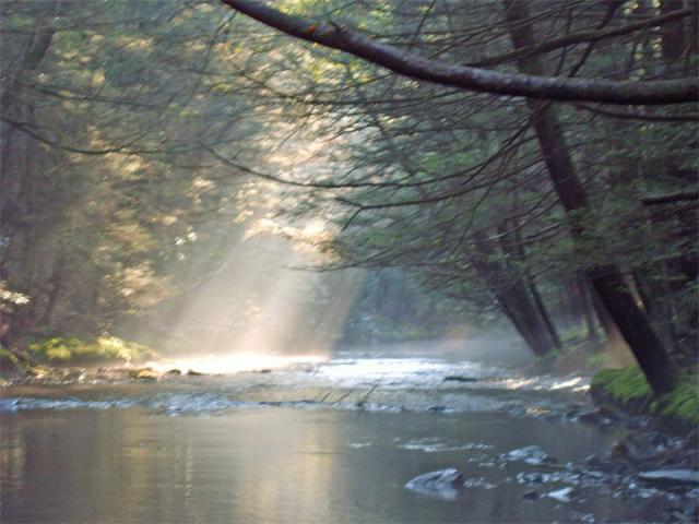 Clarks Creek