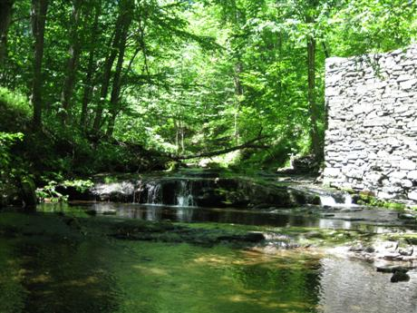 Old streamside ruins