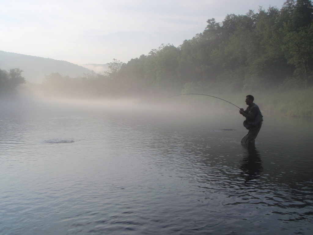 Fish on June 2010