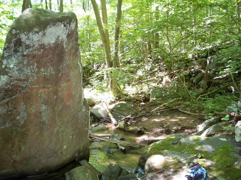 Scenic brookie stream