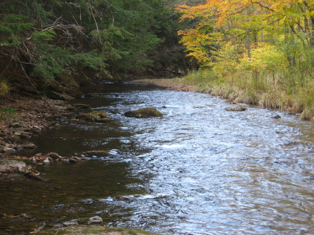 Slate Run in October
