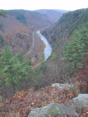 Pine Creek Gorge, October