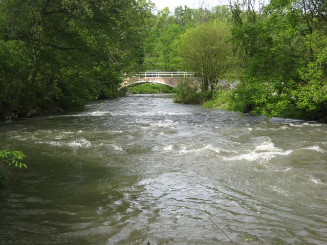 Spring Creek, Jam 11
