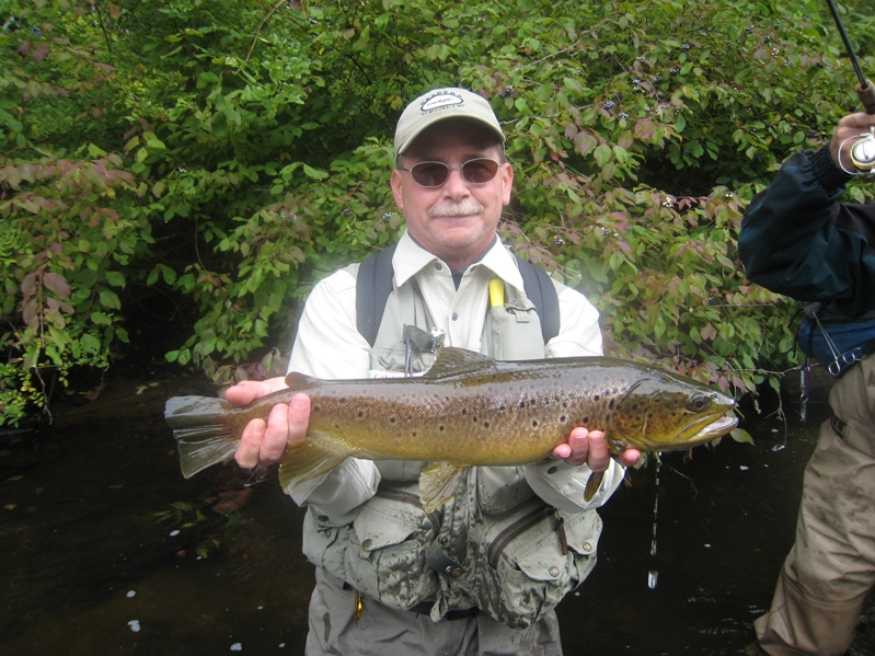 Fall Brown Trout from Western PA