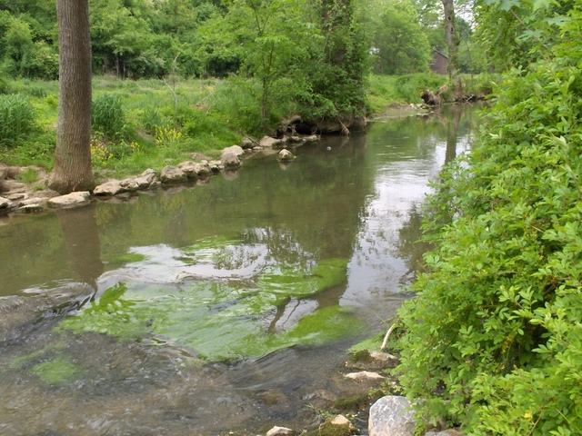 lititz run millport conservancy2