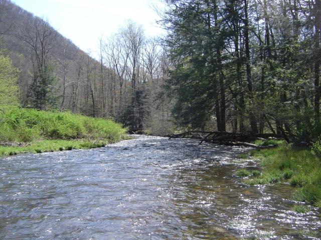 Young Woman's Creek
