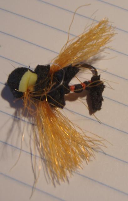 Mauled Cicada Fly