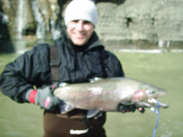 Bad photo, but nice fish