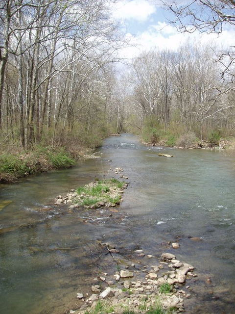 fishing creek
