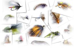 Fly Tying Website that really Cooks!