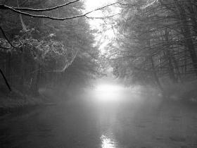 Clark's Creek