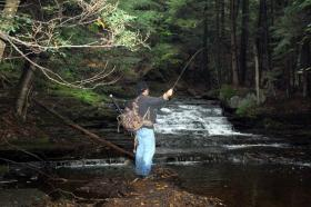 Fishing for Brookies