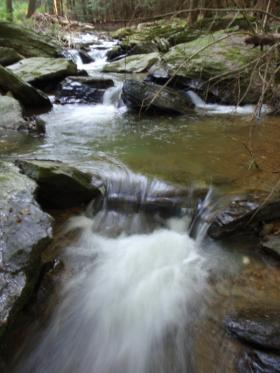 Muddy Creek cascading trib