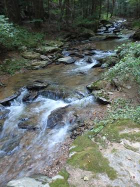 Nice tributary