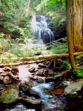 Dutchman's Falls