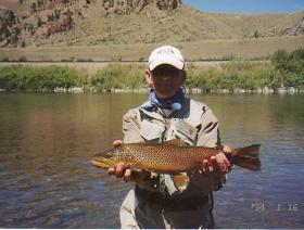 Large Tailwater Brown