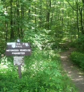 Roaring Run Trail