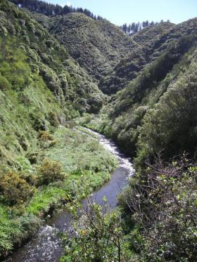 North Island Stream pic