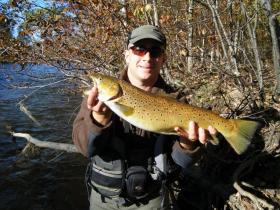 Salmon River Brown