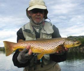 Tailwater brown