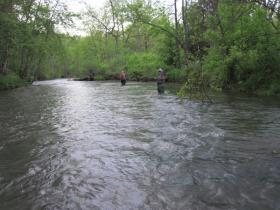 Swattie and Squatch fishing Spring