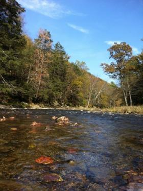 Penns Creek - 10/14/12