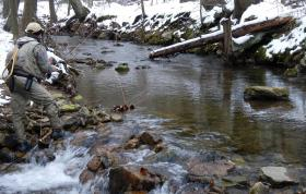 Foxgap Fishing on Jan 1