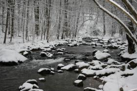 West Branch Perkiomen in Winter in the SGL