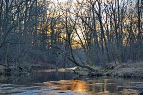 Calm Winter Evening on Valley Creek