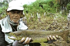 24 Inch Monster Brown.jpg