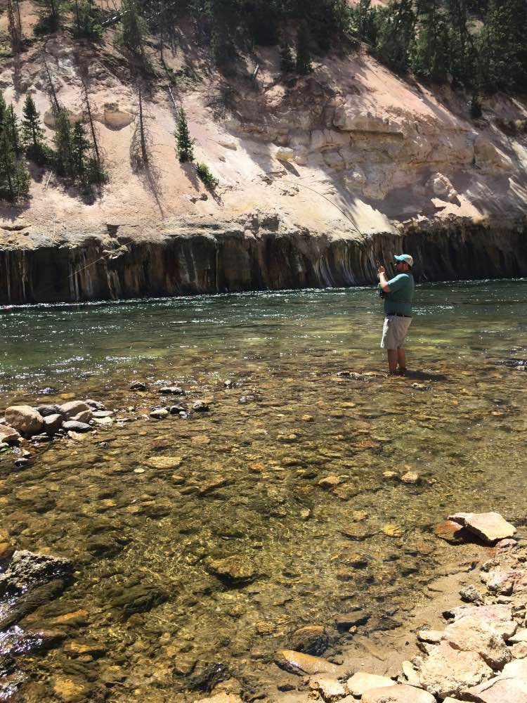 Yellowstone River!