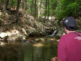 Fishing a small pool in Shenandoah