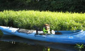 Weiner in a boat!