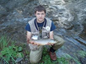 Potter county wild brown...19""