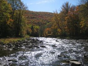 Fall on Penns Creek