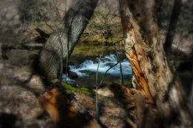 Laurer Hill State Park